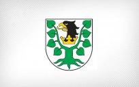 Herb Powiatu Oleckiego. Przedstawia on głowę czarnego orła z dziobem i koroną na szyi pomiędzy dwoma konarami lipy zielonej, z których każdy ma cztery liście.